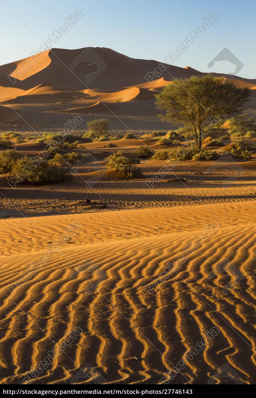 africa, , namibia, , namib, desert, , namib-naukluft, national - 27746143