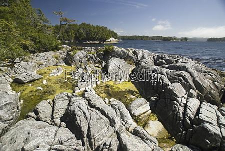 afternoon at skull cove bramham island