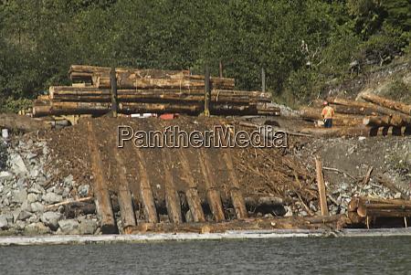 logging operation near sechart barkley sound