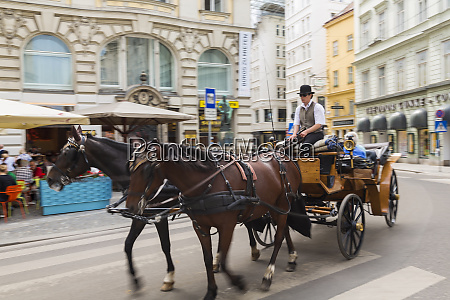 horse and carriage ride vienna austria