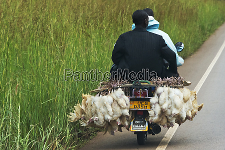 a motorcycle carrying two people and