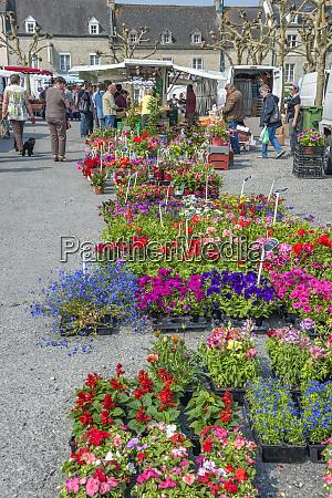 outdoor market sainte mere eglise normandy