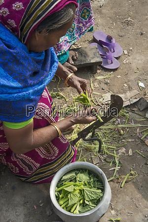 woman cleaning vegetable dhaka bangladesh