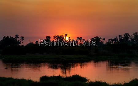 okavango river botswana africa sunrise large