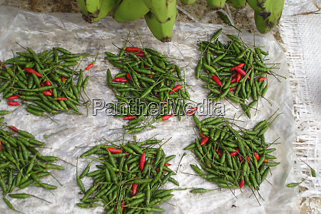 close up on selling chilis at