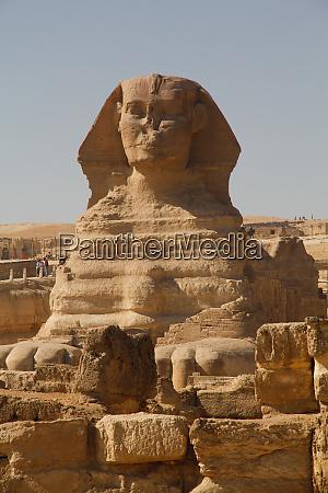 africa egypt cairo giza plateau the