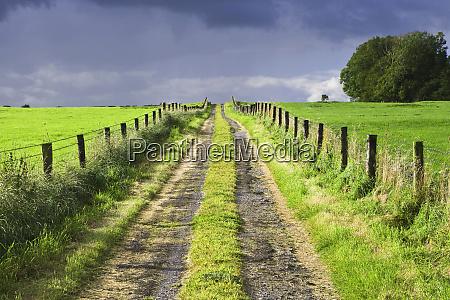 europe ireland dirt road in county