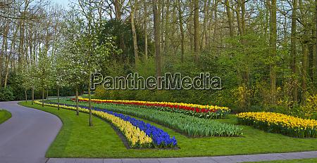 formal garden spring flowerbeds