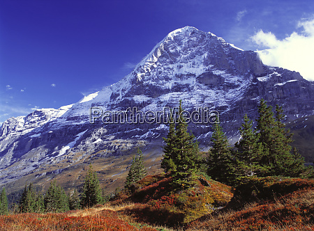 europe switzerland eiger fall colors abound