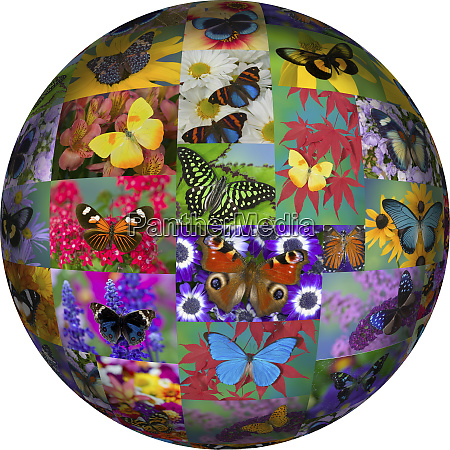 photoshop designed globe with numerous butterfly
