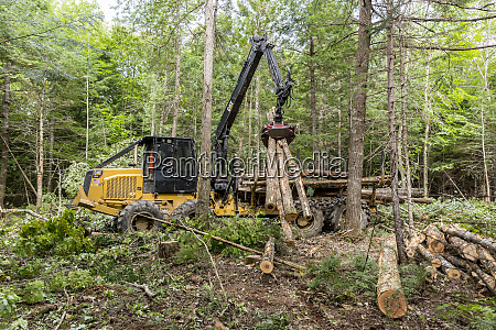 log forwarder moving logs reed plantation