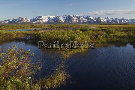 seward peninsula sub arctic landscape