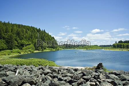 usa washington state olympic peninsula quillayute