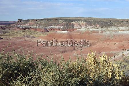 arizona vista of the painted desert