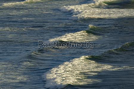 wave pattern off oregon coast