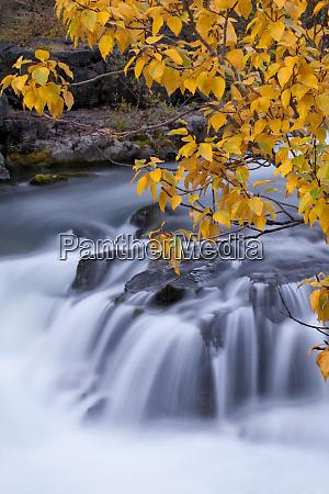 usa oregon rogue river waterfalls in