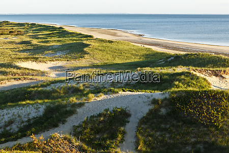 dunes on bound brook island cape