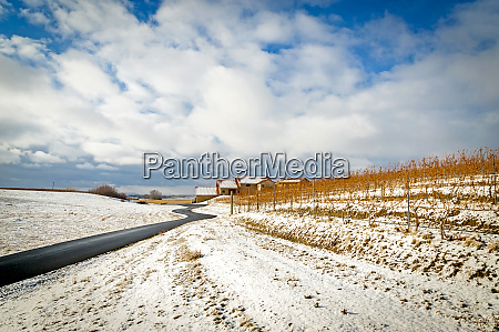 usa washington state walla walla winter