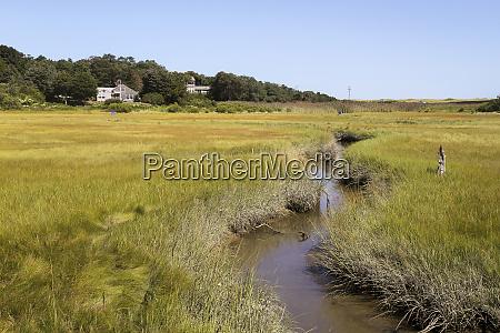 wetlands cape cod national seashore eastham