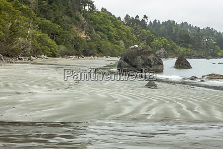 trinidad california old home beach at