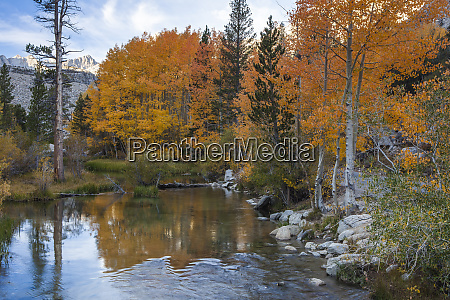 bishop creek outlet and fall color