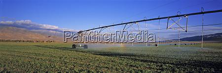 usa california owens valley extensive irrigation