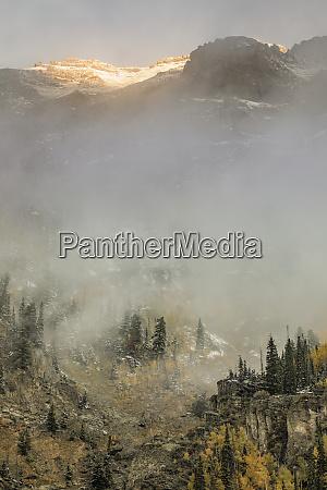 autumn aspen trees mist and mountain