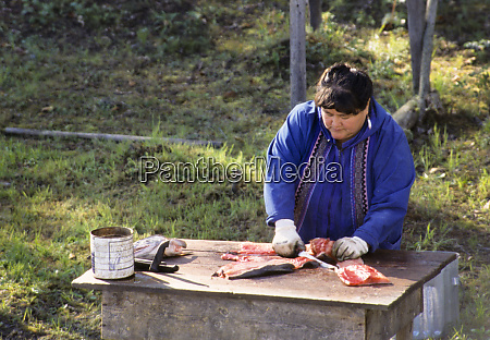 athabaskan woman demonstrates how to cut