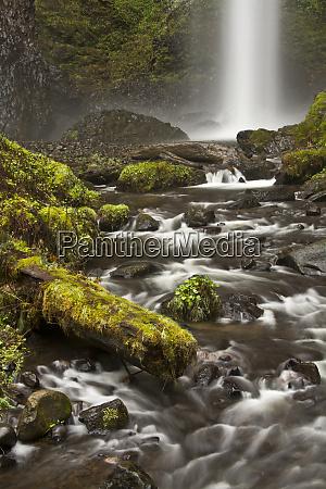 latourell falls and creek guy s