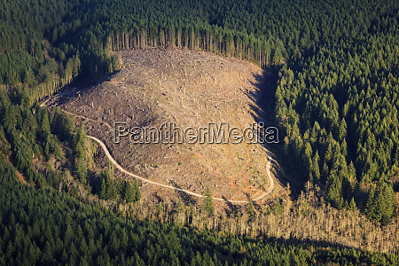 usa oregon aerial landscape of a