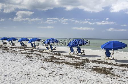 usa florida dunedin row of beach