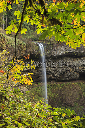 usa oregon silver falls state park