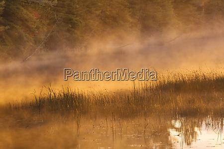 tahquamenon river at sunrise near paradise