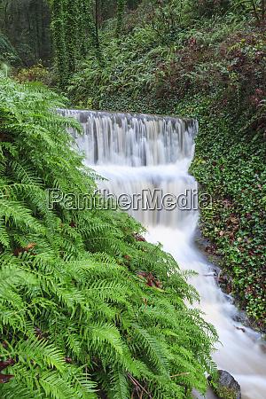 seasonal creek on outskirts of portland
