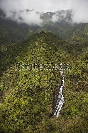 usa hawaii kauai forested mountains with