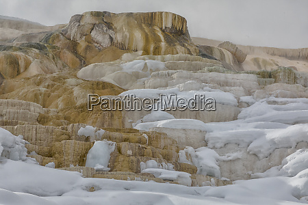 usa wyoming yellowstone national park mammoth