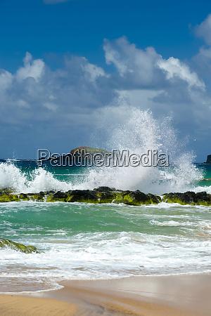 usa kauai hawaii a wave breaks