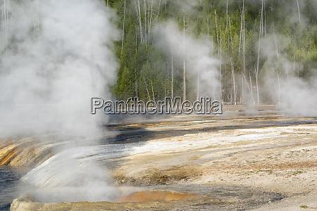 yellowstone national park biscuit geyser basin