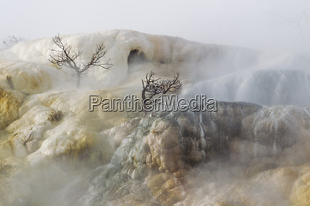 faces of mammoth hot springs