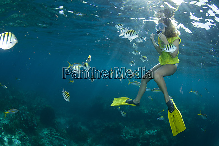 a young girl snorkeling with tropical