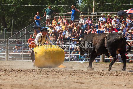 rodeo clown facing down bull augusta