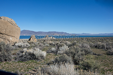 usa nevada nixon pyramid lake paiute