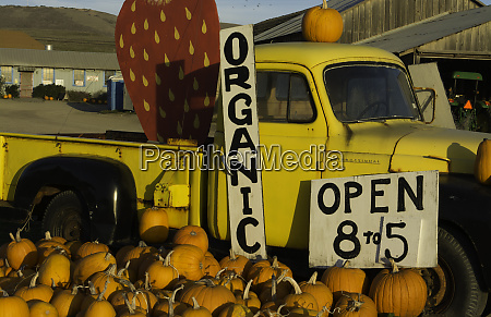 pacific coast highway 1 california organic