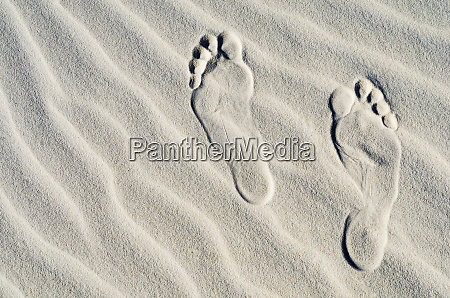 footprints on dune patterns white sands