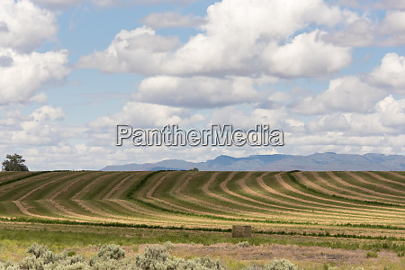 usa idaho agricultural patterns and dramatic