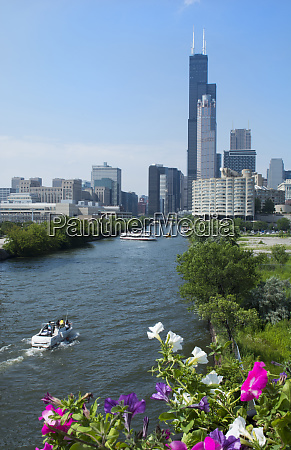 chicago illinois skyline from the south