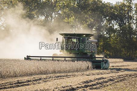 soybean harvest with john deere combine