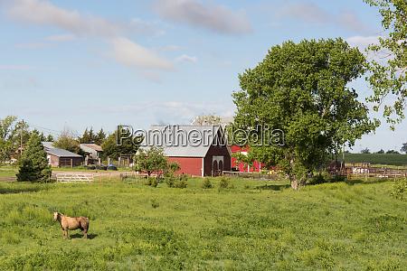 usa kansas quinter picturesque rural scenic