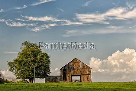 barn in afternoon light kentucky