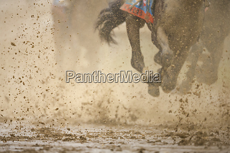 horse racing in the mud